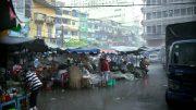 Dengue: Vietnam
