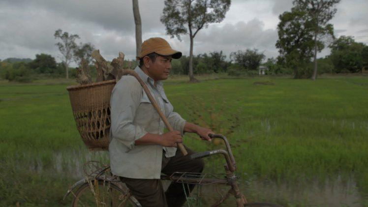 WWF: Ecotourism